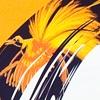 folder brochure DTP opmaak lay-out kleurig informatief stichting paradijsvogel papoea indonesië foto's logo ontwerp